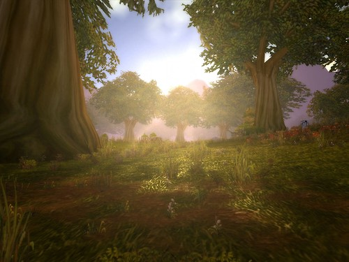 Good Old Elwynn Forest.